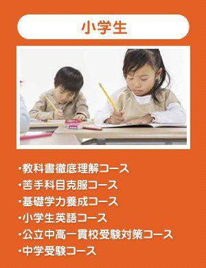 多種多様な小学生コース